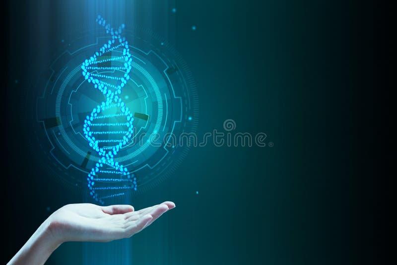 DNA för handinnehavblått royaltyfri illustrationer