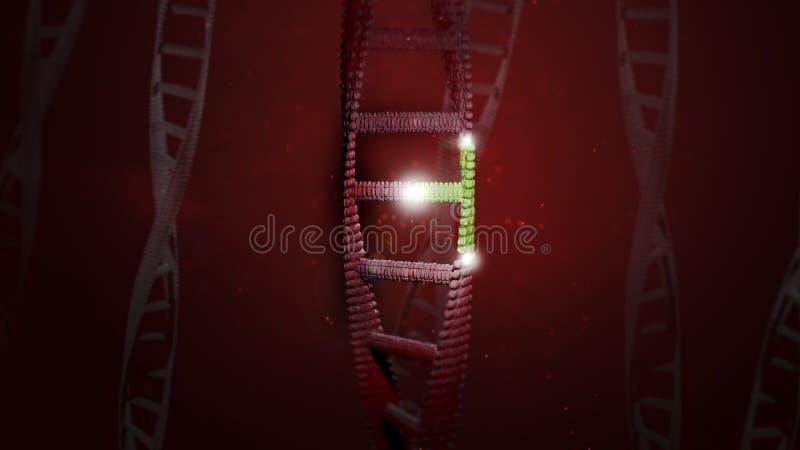 DNA-Gen, welches das Verfassen redigiert lizenzfreie stockbilder