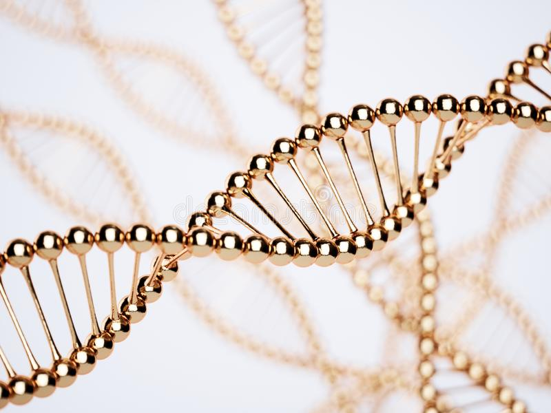 DNA golden structure model with soft focus stock images