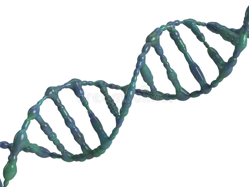 Download Dna helix stock illustration. Image of chromosome, medicament - 15119928