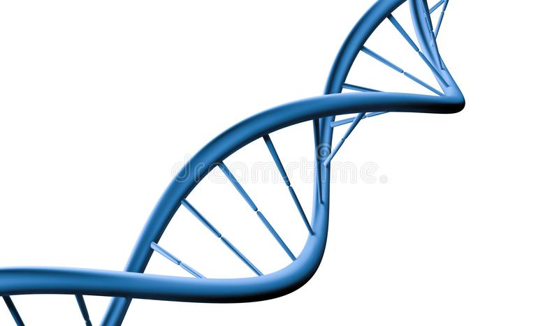 DNA helix molecule isolated on white background. 3D rendered illustration.  royalty free illustration