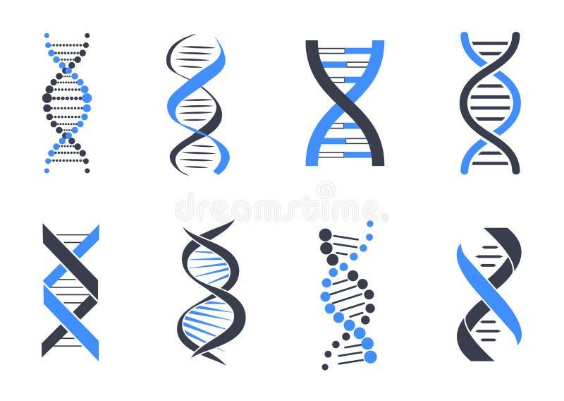 DNA Helix Patterns Colorful Vector Illustration royalty free illustration