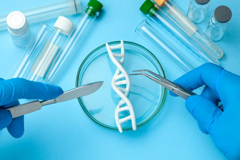 DNA helix research. Concept of genetic experiments on human biological code. Medical instrument scalpel and forceps and test tubes. DNA helix research. Concept stock images