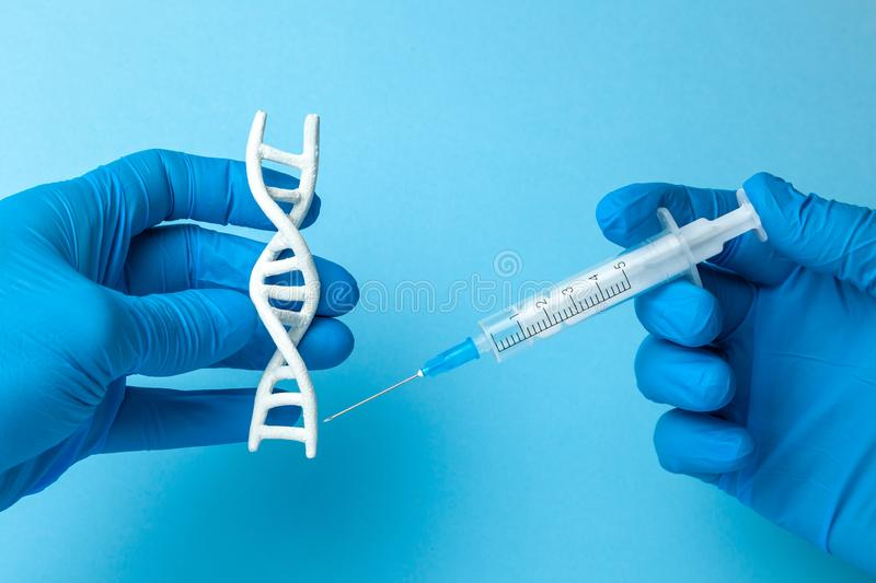 DNA helix research. Concept of genetic experiments on human biological code DNA. The scientist is holding DNA helix and syringe. DNA helix research. Concept of royalty free stock photo
