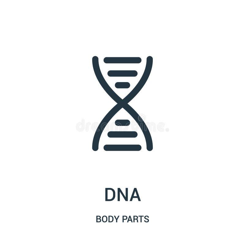 DNA-Ikonenvektor von der Körperteilsammlung Dünne Linie DNA-Entwurfsikonen-Vektorillustration stock abbildung