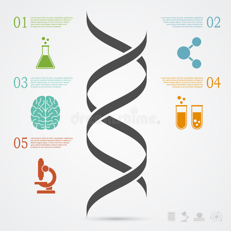 DNA Infographic vektor abbildung