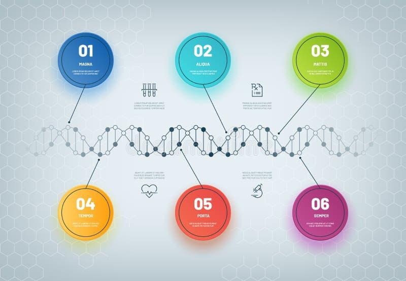 DNA Infographic Diagrama de cadena molecular, paso médico infographic, flujo de trabajo del negocio Concepto genético del extract stock de ilustración