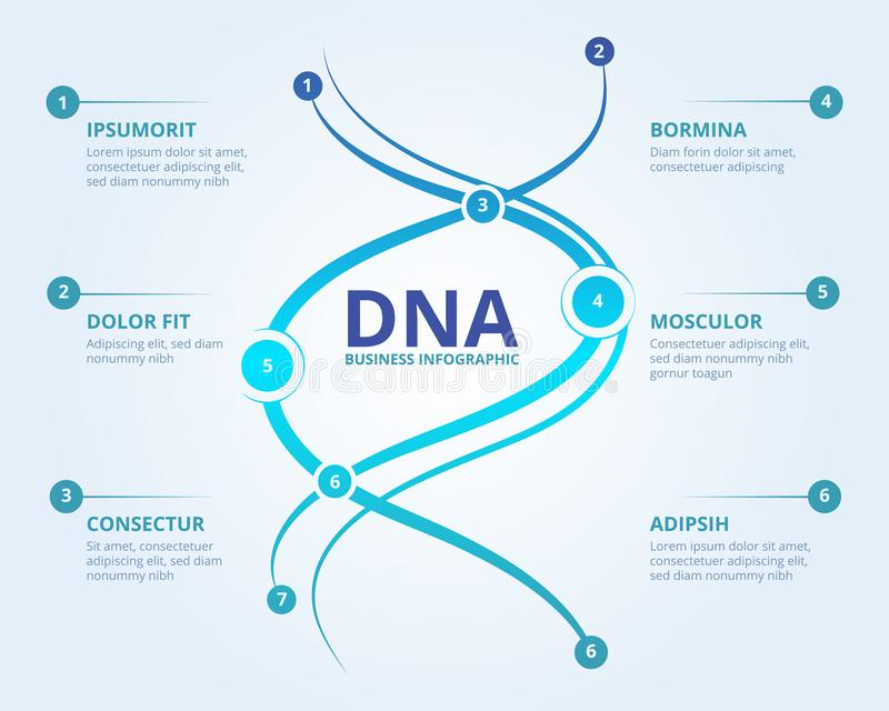 Dna infographics. Spiral human biology structure vector medical scientific concept with place for your text. Illustration of dna chemistry information vector illustration