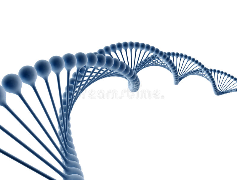 DNA isolated on white royalty free stock photos
