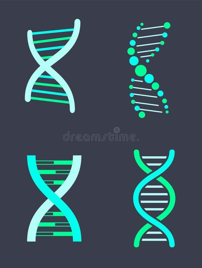 DNA-Kettingsvariaties van Heldere Turkooise Kleurenreeks stock illustratie