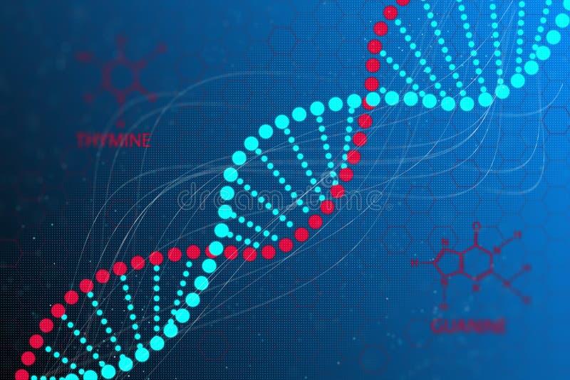 DNA kodu struktura ilustracja wektor
