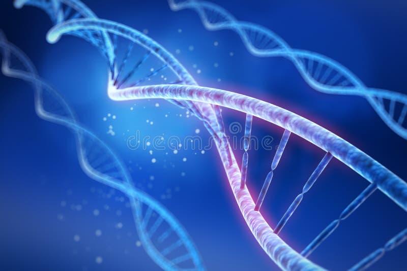 DNA - medicinsk illustration 3D vektor illustrationer