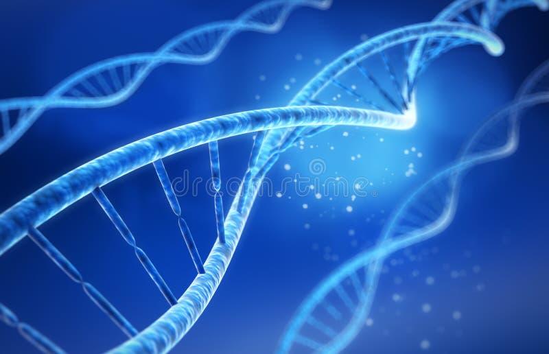 DNA - medizinische Illustration 3D stock abbildung