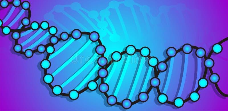 Download DNA model stock illustration. Image of genetic, laboratory - 21855784