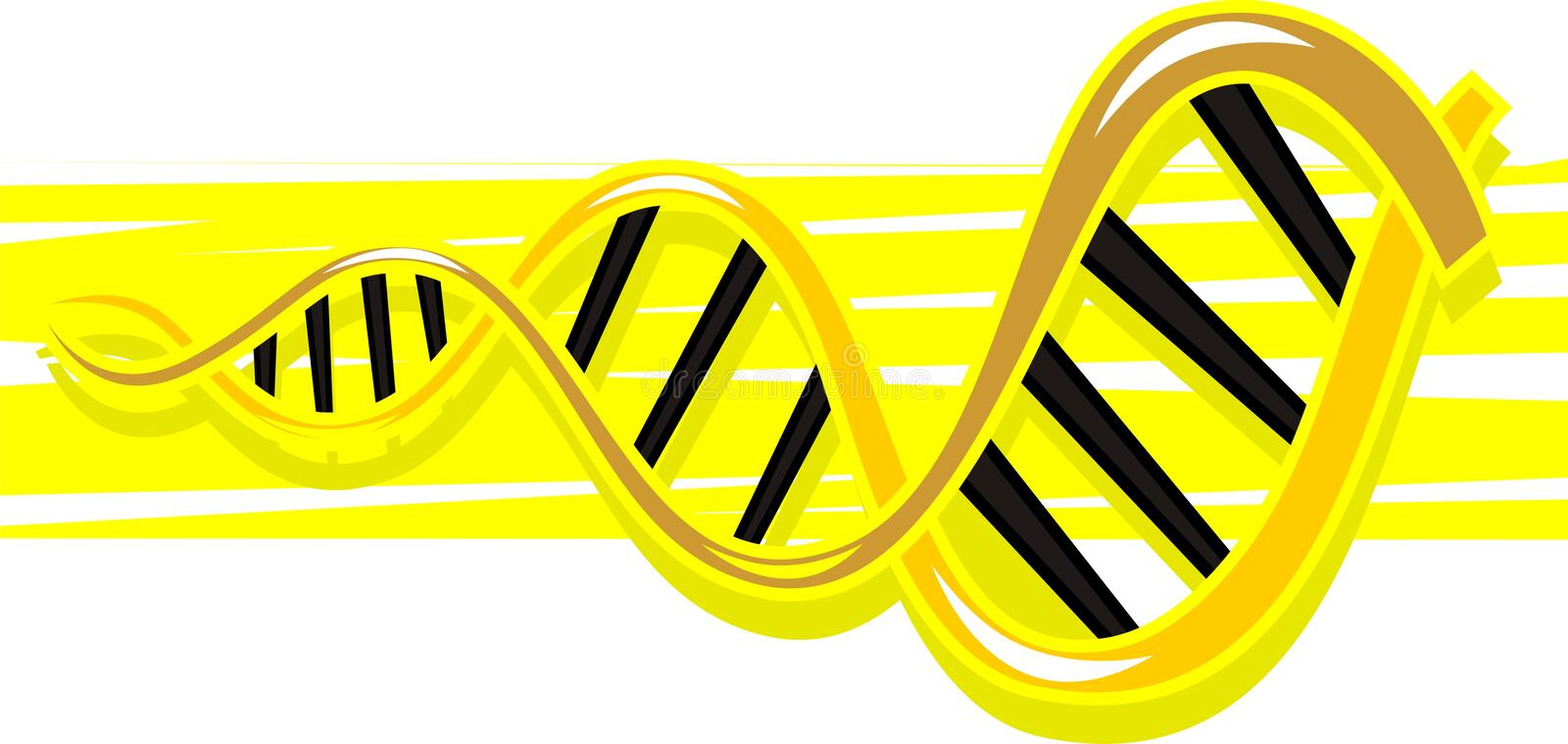 Download DNA model stock illustration. Image of life, contour - 21855889
