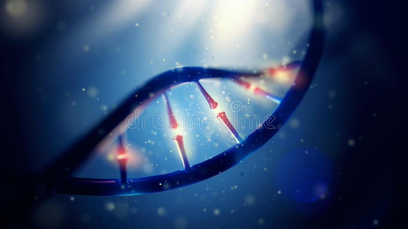 DNA molecule. Closeup of concept human genome. 3d illustration of DNA molecule. Closeup of concept human genome stock images
