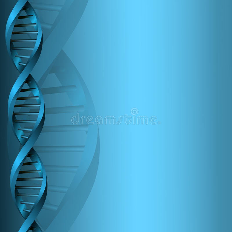 a study of dna or deoxyribonucleic acid Franklin, and maurice wilkins led to the discovery of the deoxyribonucleic acid (dna) double-helix conformation [1,2] with dna at their core, many nucleic acid.