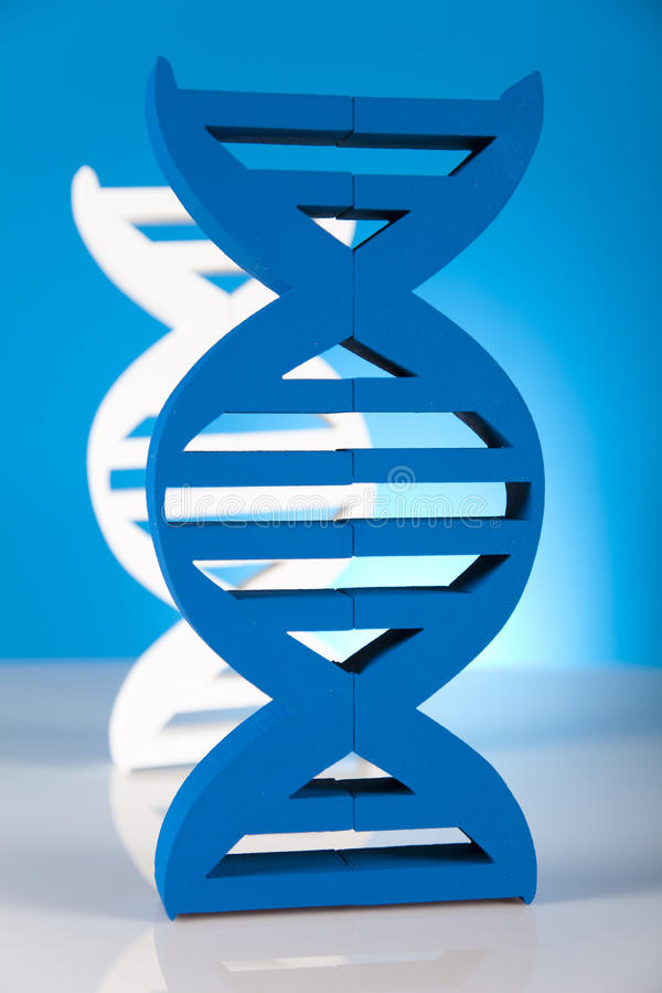 DNA molecules stock photography