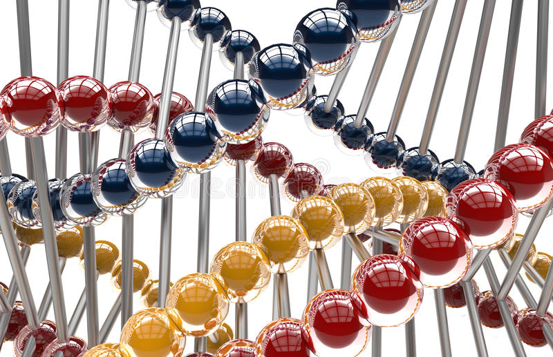 DNA molecules on white background. 3D rendered illustration of the DNA molecules isolated on a white background. Three different colors have been added to the royalty free illustration