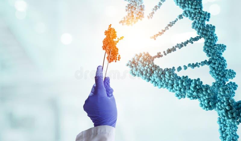 DNA-moleculesontwerp met de holdingsscharen van de artsenhand Gemengde media royalty-vrije stock afbeeldingen