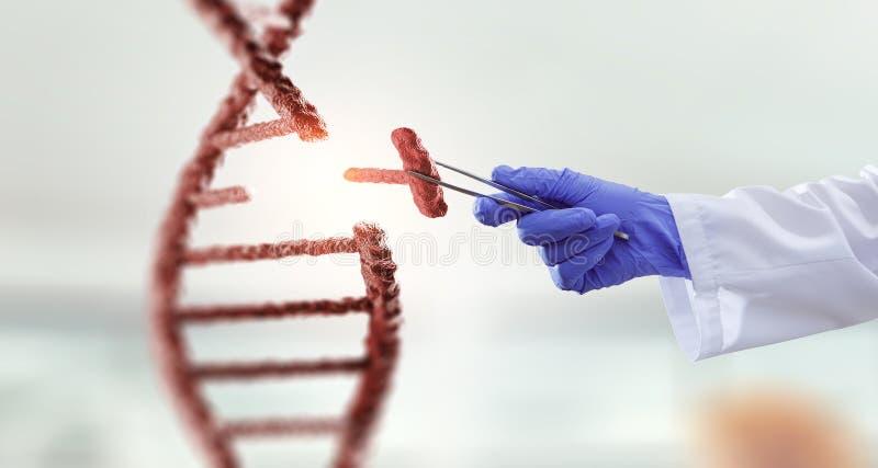 DNA-moleculesontwerp met de holdingsscharen van de artsenhand Gemengde media stock afbeelding
