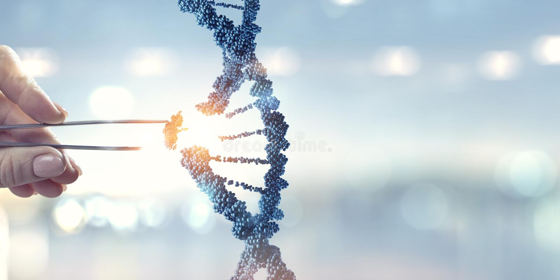 DNA-moleculesontwerp met de vrouwelijke scharen van de handholding Gemengde media royalty-vrije stock afbeelding