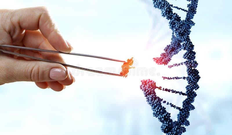 DNA-moleculesontwerp met de vrouwelijke scharen van de handholding Gemengde media royalty-vrije stock foto