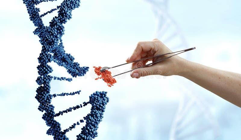 DNA-moleculesontwerp met de vrouwelijke scharen van de handholding Gemengde media stock afbeelding
