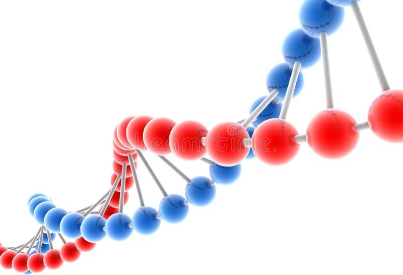 dna-molekyl vektor illustrationer