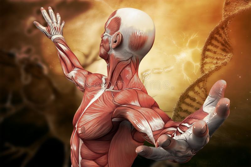 DNA, neurons molekyl och man på konstbakgrunden illustration 3d vektor illustrationer