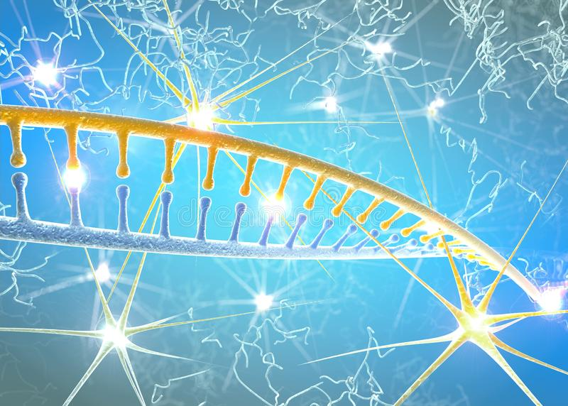 DNA, neurony, DNA restrukturyzacja, przepisywanie i ciągły odzyskiwanie, narosła aktywność nerw komórki ilustracji