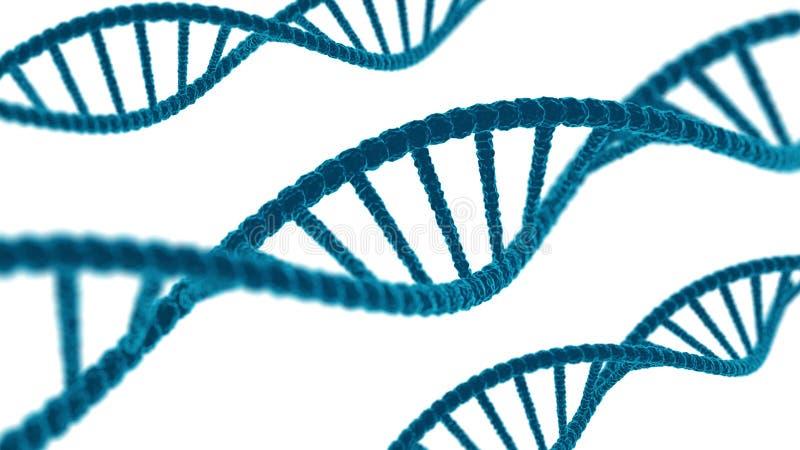 DNA-Opeenvolging De code van DNA van de moleculesstructuur Wetenschap en technologieconcept 3d voorraadillustratie Malplaatje op  vector illustratie