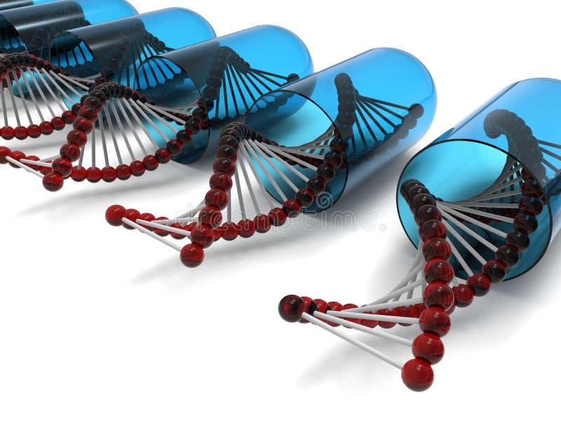DNA pasemka otwarte kapsuły ilustracja wektor