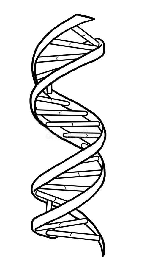 DNA pasemko zdjęcie stock