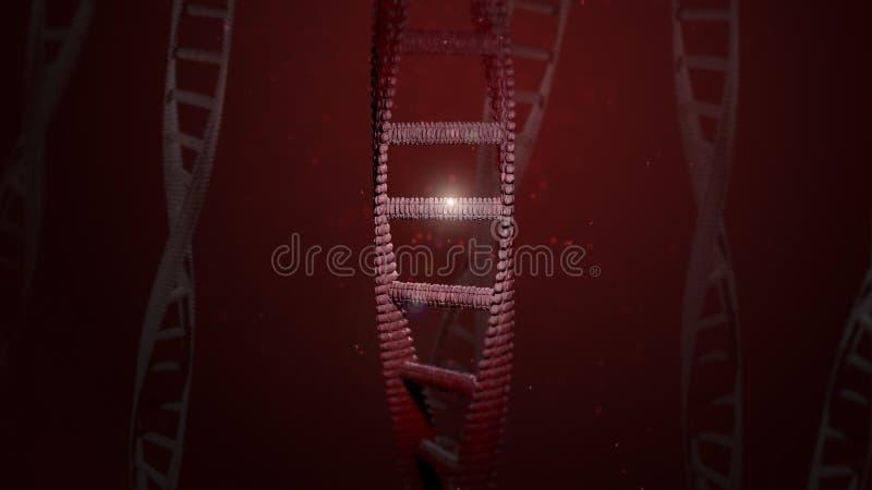 DNA que compone con una sola GEN encendida para arriba fotografía de archivo