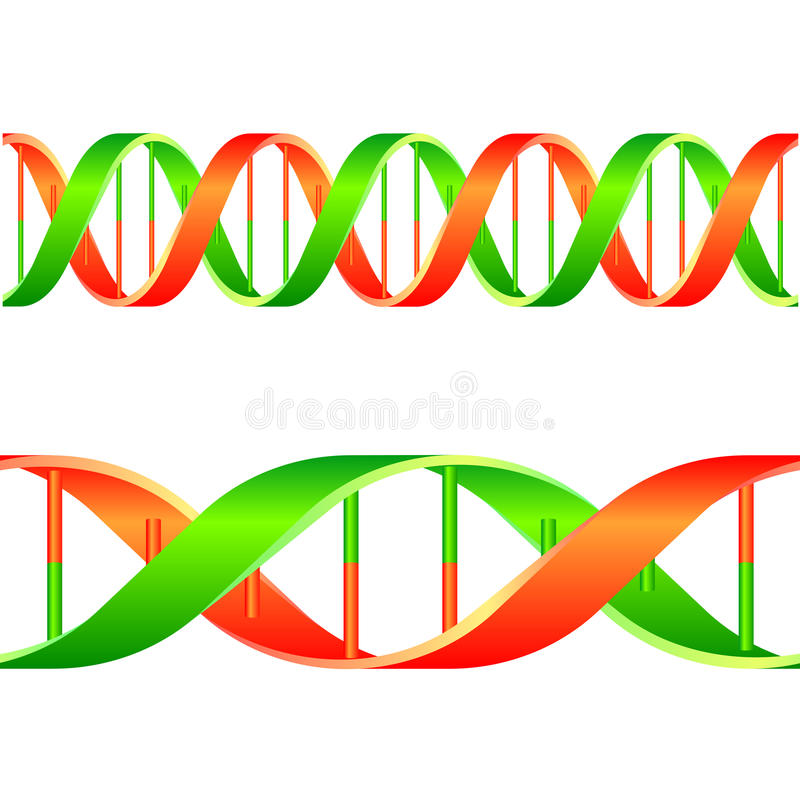 dna-rad stock illustrationer