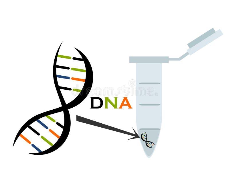 Download DNA research stock vector. Illustration of molecule, bond - 19010724