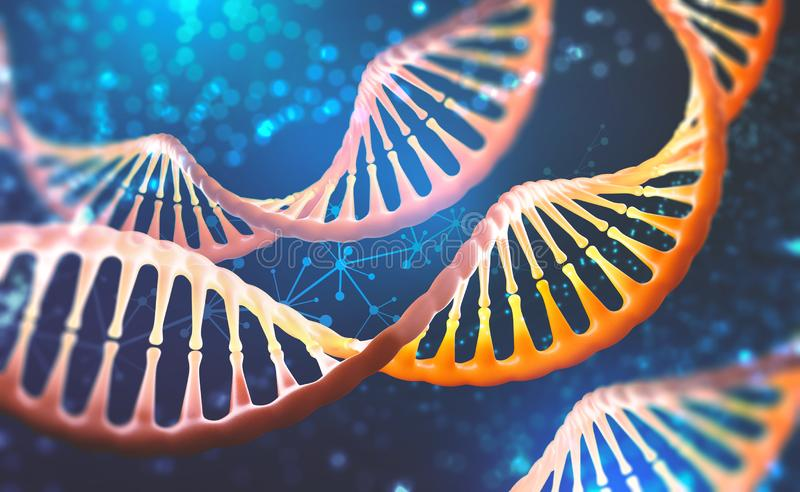 DNA research molecule. Analysis of structure human genome. DNA research molecule. 3D illustration. Analysis of structure human genome royalty free illustration