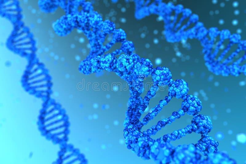 DNA-Schnecke lizenzfreie stockfotografie