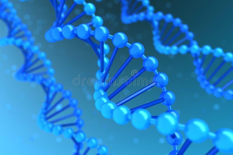 DNA-Schnecke stockfotos
