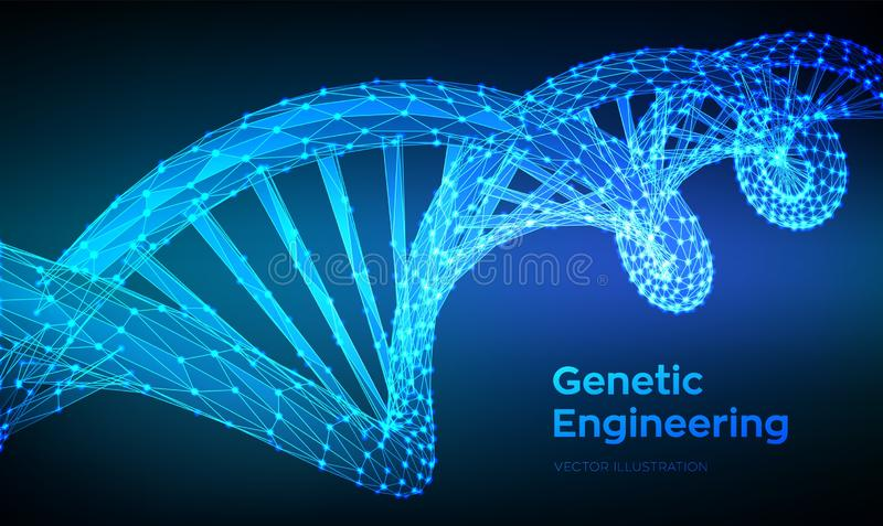 DNA sequence. Abstract 3d polygonal wireframe DNA molecules structure mesh. DNA code editable template. Science and Technology. Concept. 3d Low Poly Vector stock illustration