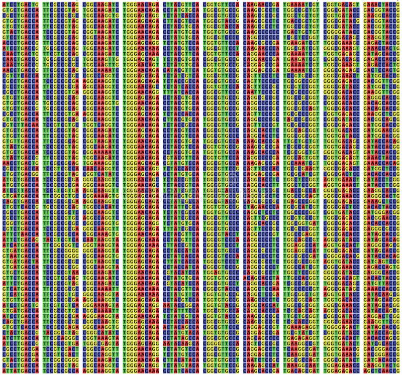 DNA sequence alignment royalty free stock image
