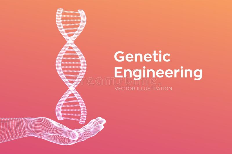 DNA sequence in hand. Wireframe DNA molecules structure mesh. DNA code editable template. Science and Technology concept. Vector. Illustration royalty free illustration