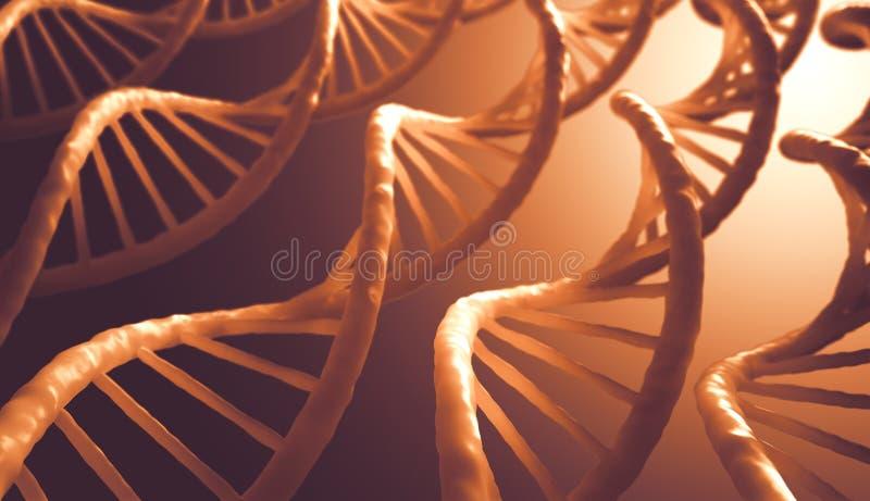 Download DNA Sequence stock illustration. Illustration of molecular - 33533134