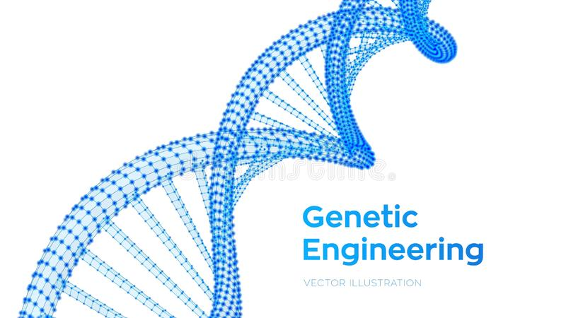 DNA sequence. Wireframe DNA molecules structure mesh. DNA code editable template. Science and Technology concept. Vector illustrat. Ion stock illustration