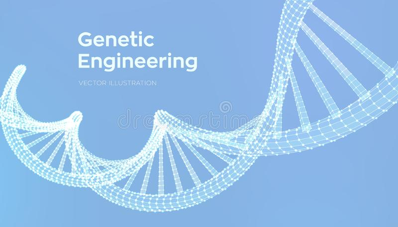 DNA sequence. Wireframe DNA molecules structure mesh. DNA code editable template. Science and Technology concept. Vector. Illustration stock illustration
