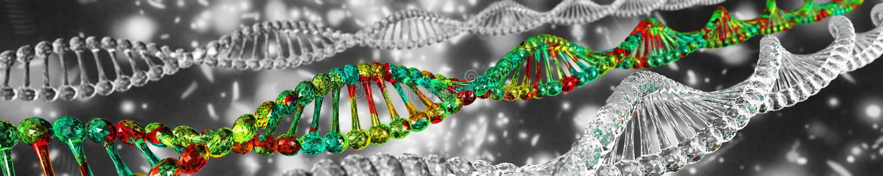DNA-spiraal op een vage achtergrond vector illustratie