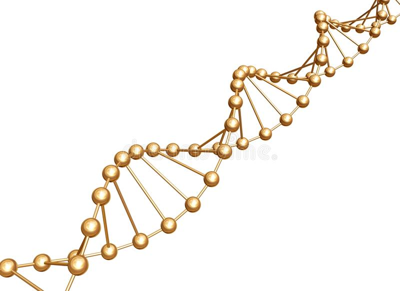 DNA spiral stock illustration