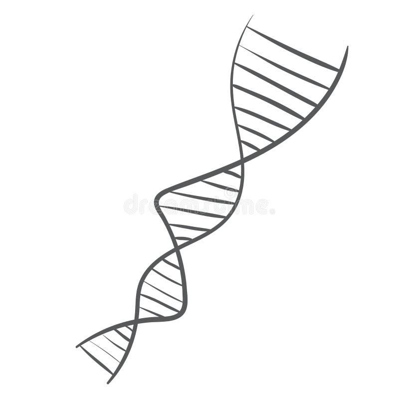 DNA spiral vector illustration