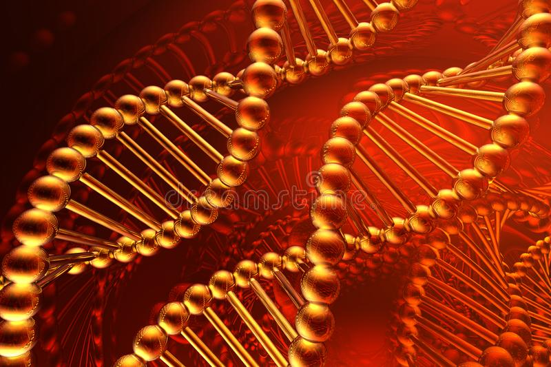 dna spirala fotografia royalty free